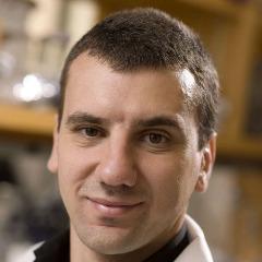 Marco Sardiello, PhD